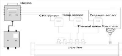 Biogas gas measurement system